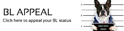 BL Appeal